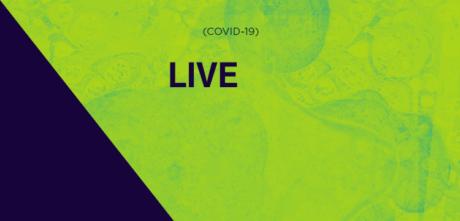CRP-03 realiza live para responder dúvidas da categoria